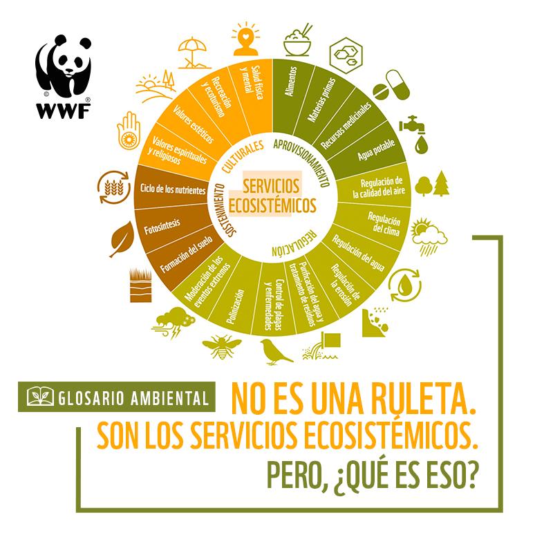 servicios-ecosistemicos