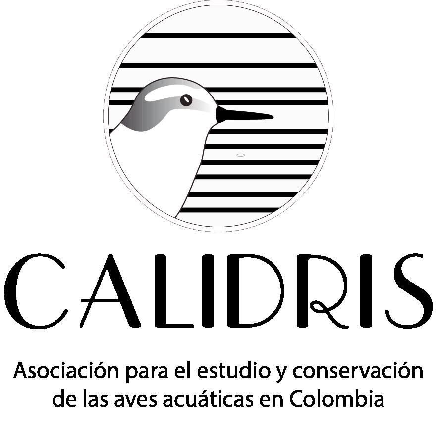 logocalidrisvertical